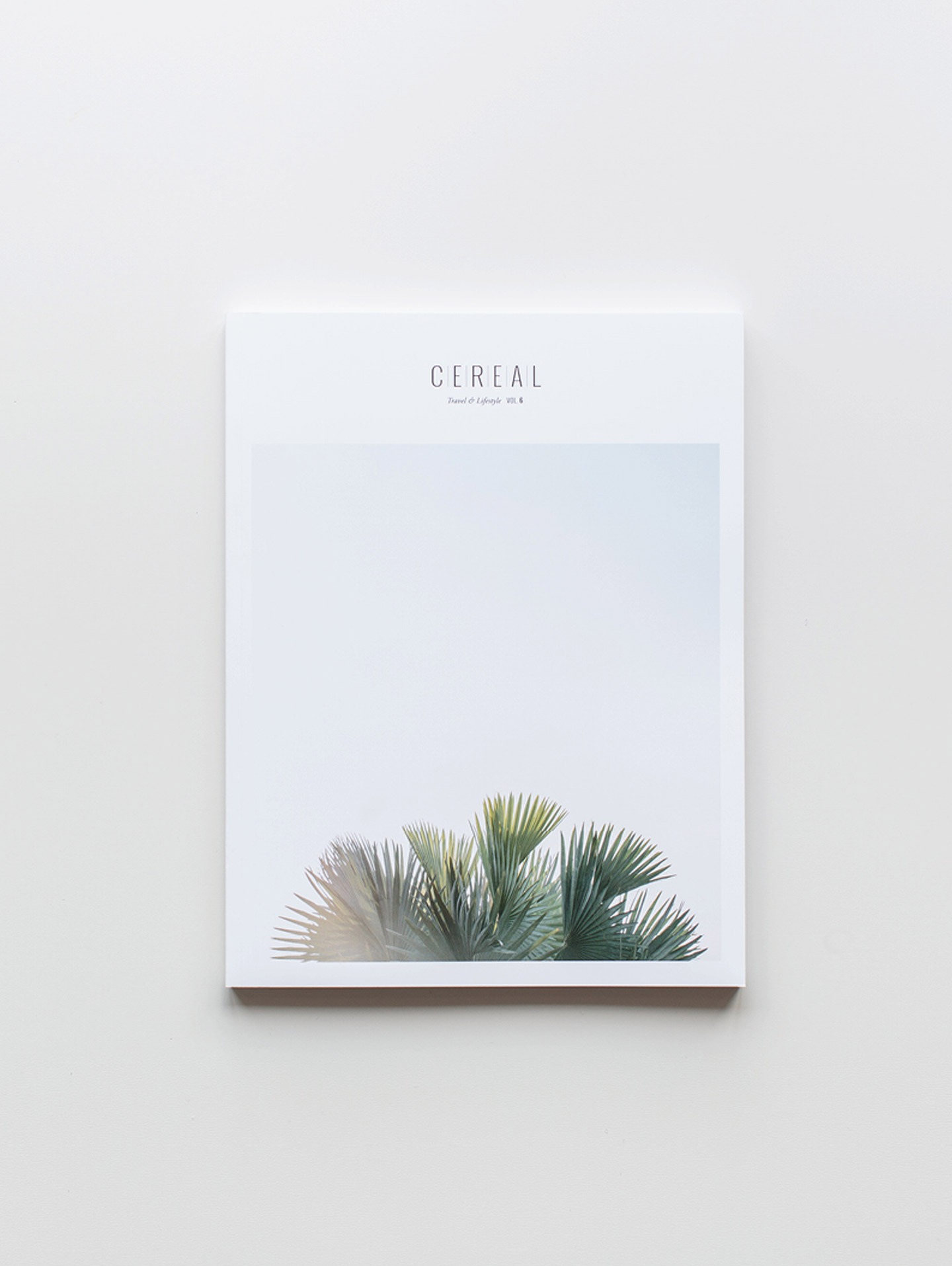 Cereal Volume 06
